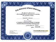 Top Diversity Owned Business - Certificate of Excellence